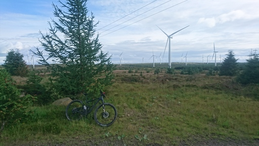 A mountain bike in front of a tree with windturbines in the background