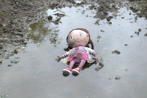 A doll in a puddle